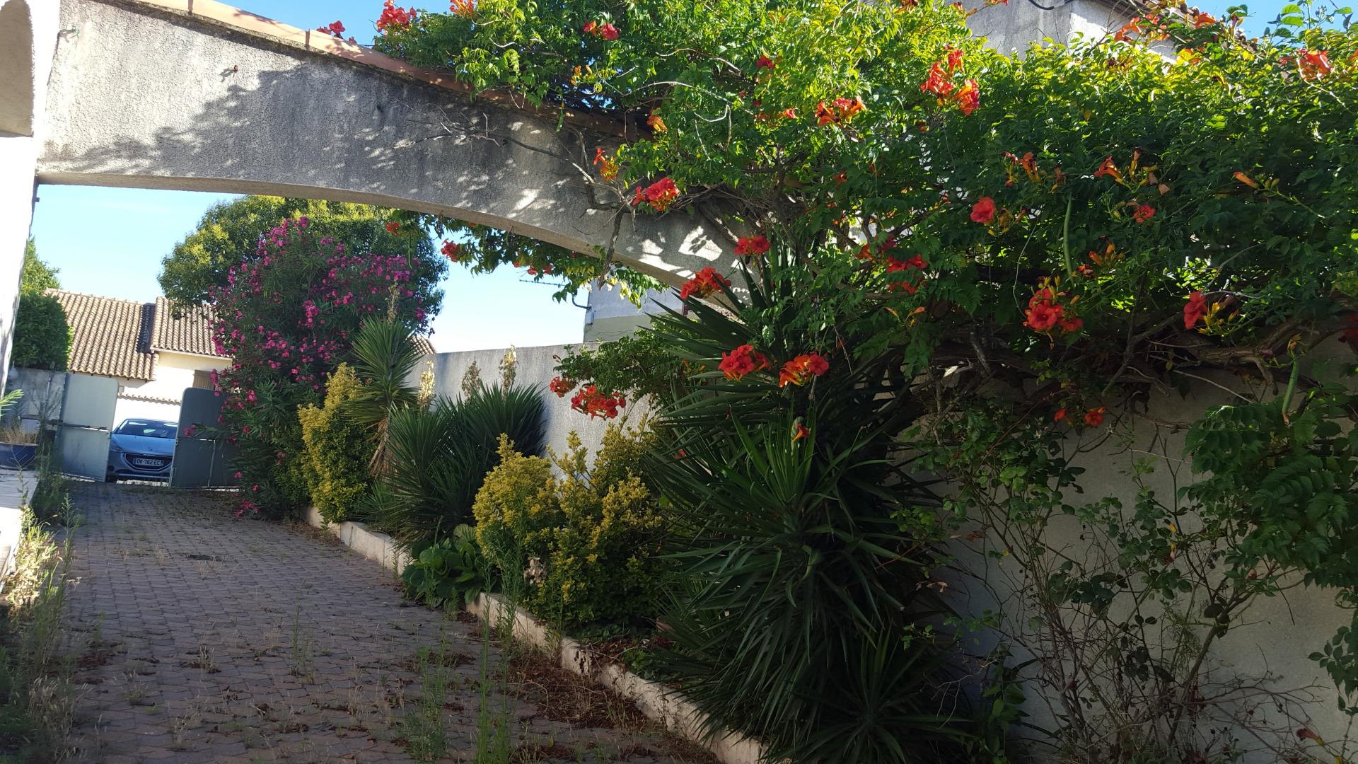 D co flora propose l 39 entretien et la tonte r guli re de for Entretien jardin avignon