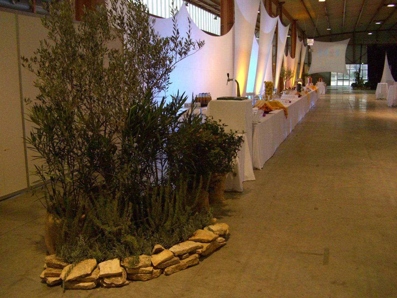 Chemin Des Canaux 30230 Bouillargues déco flora propose la location de belles plantes pour vos